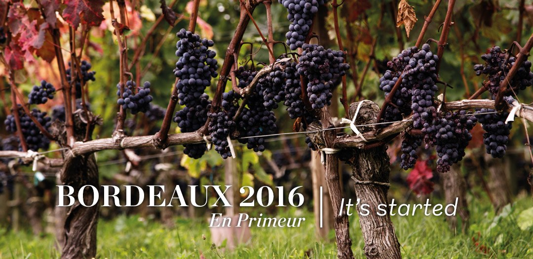Bordeaux 2016 now available at Berry Bros. & Rudd