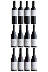 Our New World Red Wines, 12-bottle Mixed Case
