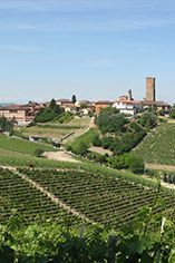 Introduction to Barolo and Barbaresco, Monday 6th November