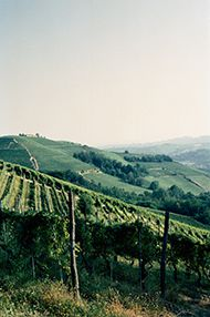 The Terroirs of Barolo, Monday 8th October 2018