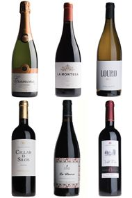 A Taste of Spain, Six-Bottle Mixed Case