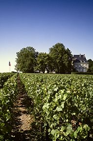 One-Day Bordeaux Wine School, Saturday 16th November 2019