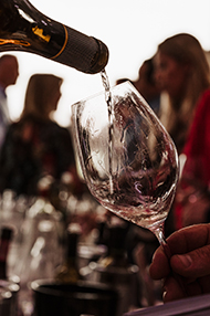 Introduction to Winetasting, Friday 24th January 2020